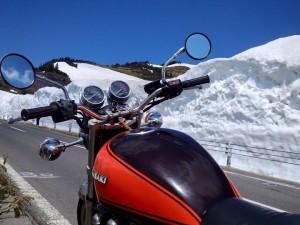 志賀草津道路雪の壁